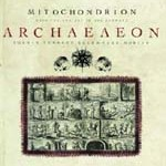 MITOCHONDRION – Archaeaeon